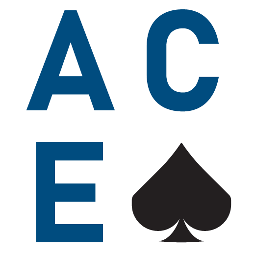 ACE Web Consulting, LLC
