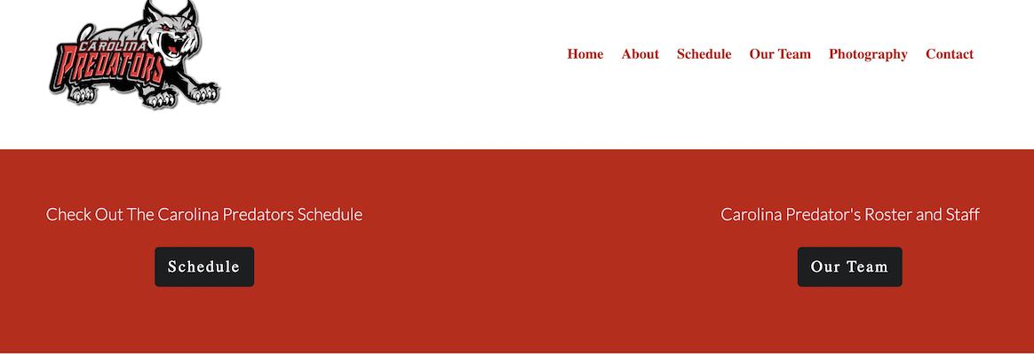 Carolina Panthers Website